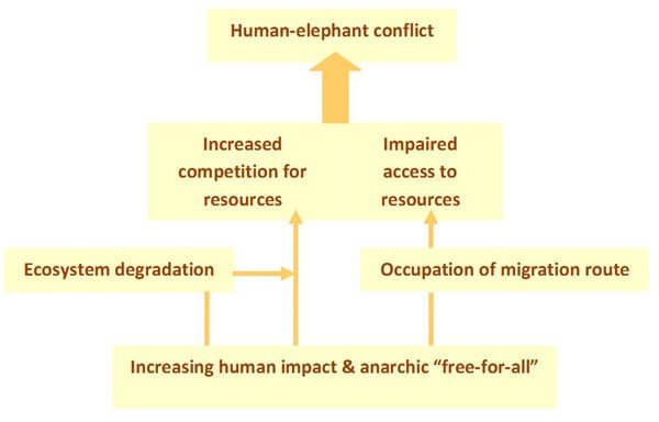 Causes of conflict_600